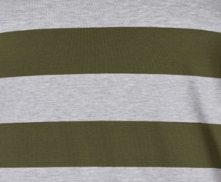 lizard green stripe (2127)